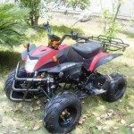 NEU Quad 50 ccm ATV mit Strassenzulassung
