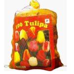 Grosshandel Tulpenzwiebeln - Triumph Mischung (XL-Packung)