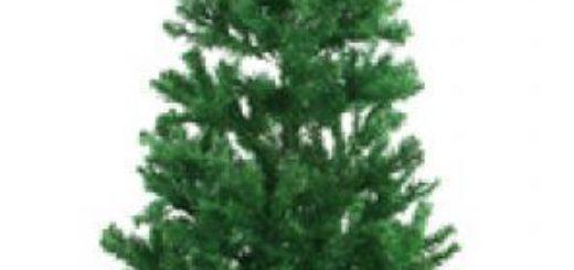 Weihnachtsbaum , 210cm