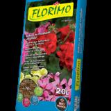 Blumenland FLorimo Balkon und Geranien Blumenerde